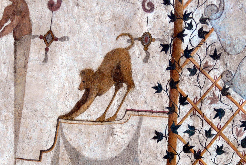 Assisi_Palazzo_dei_Priori_-_Groteske_7
