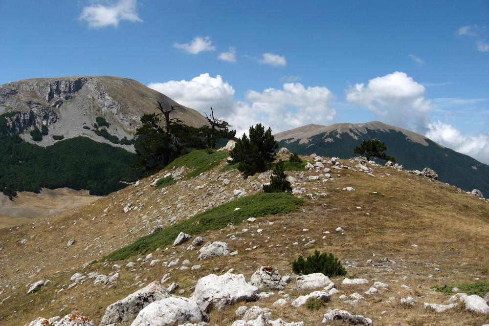 Monte_Pollino_e_Serra_del_Prete_dal_contrafforte_ovest_di_Serra_delle_Ciavole. Wikipedia