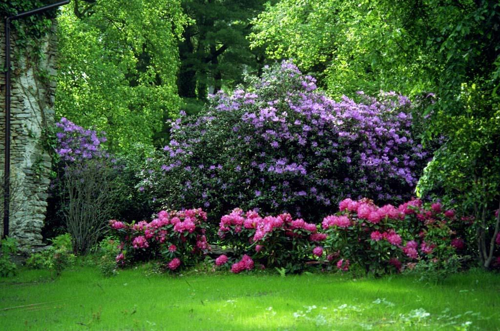 Foto: www.castellodibagnolo.it