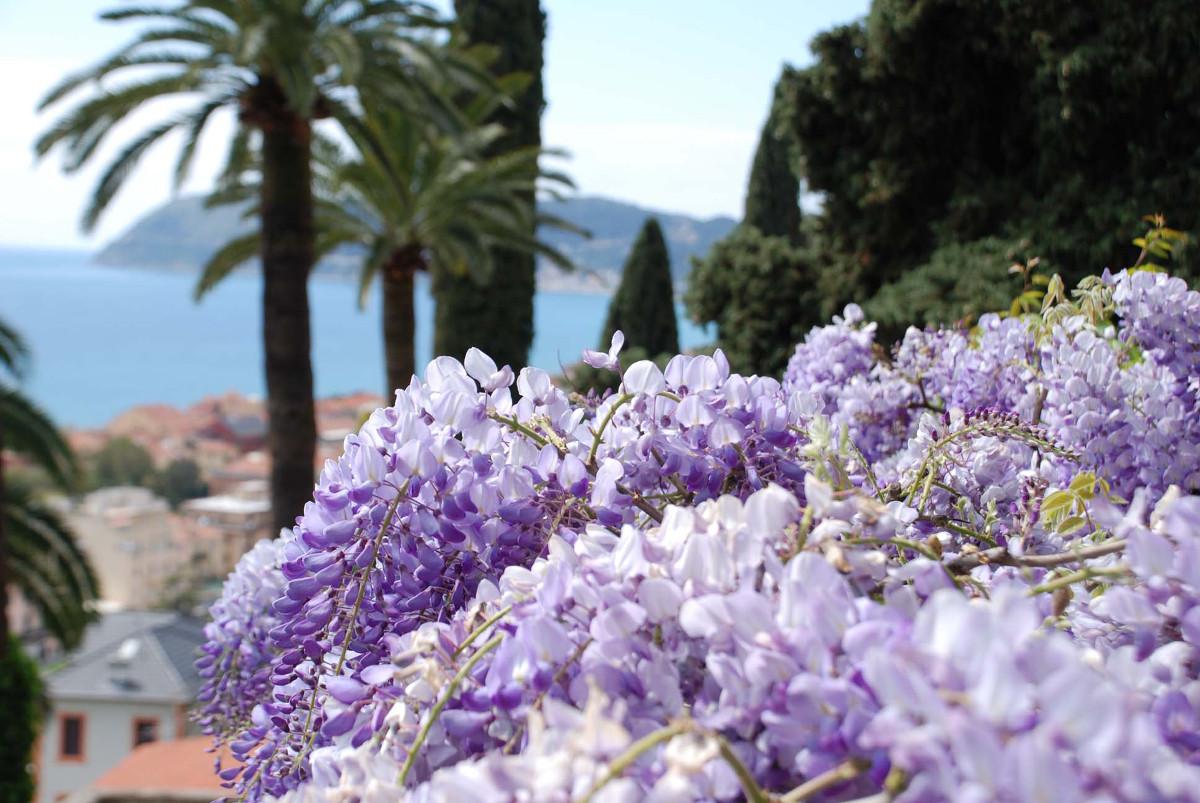 foto: www.ligurianotizie.it