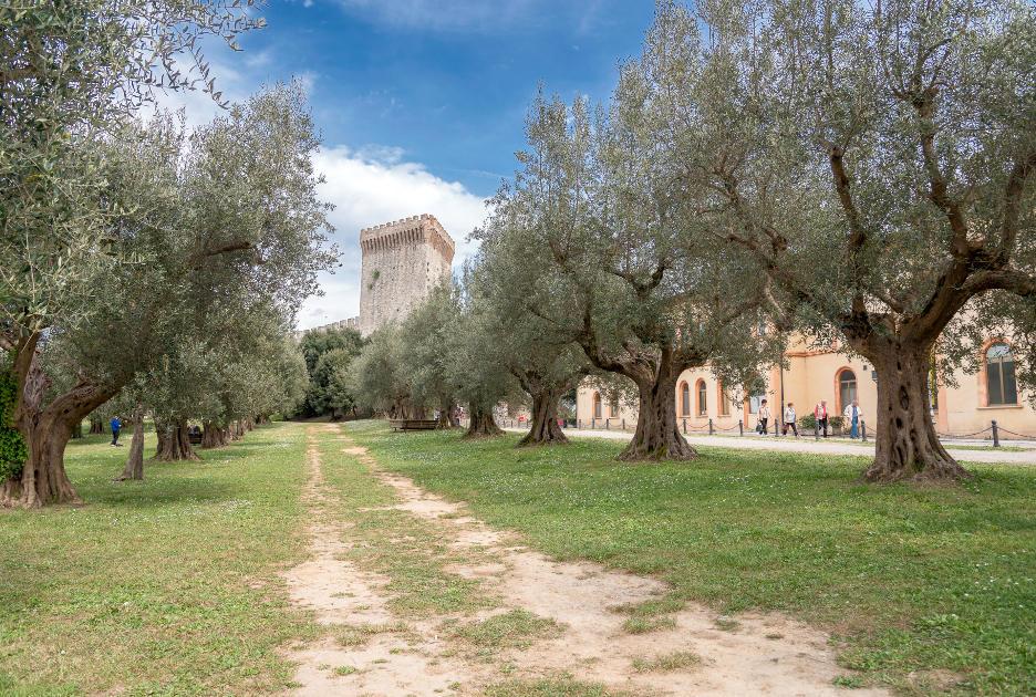 Кастильоне-дель-Лаго. Крепость. Фотография / Shutterstock.com