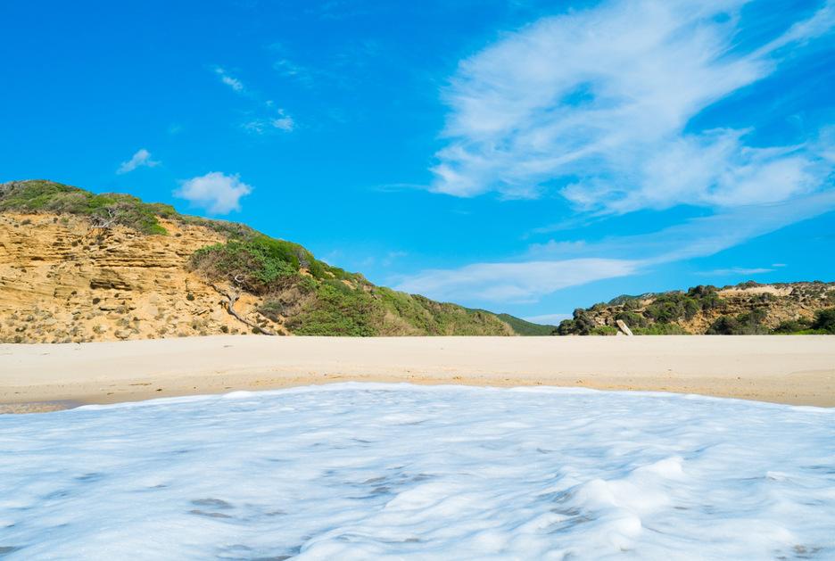 Foto / Shutterstock.com