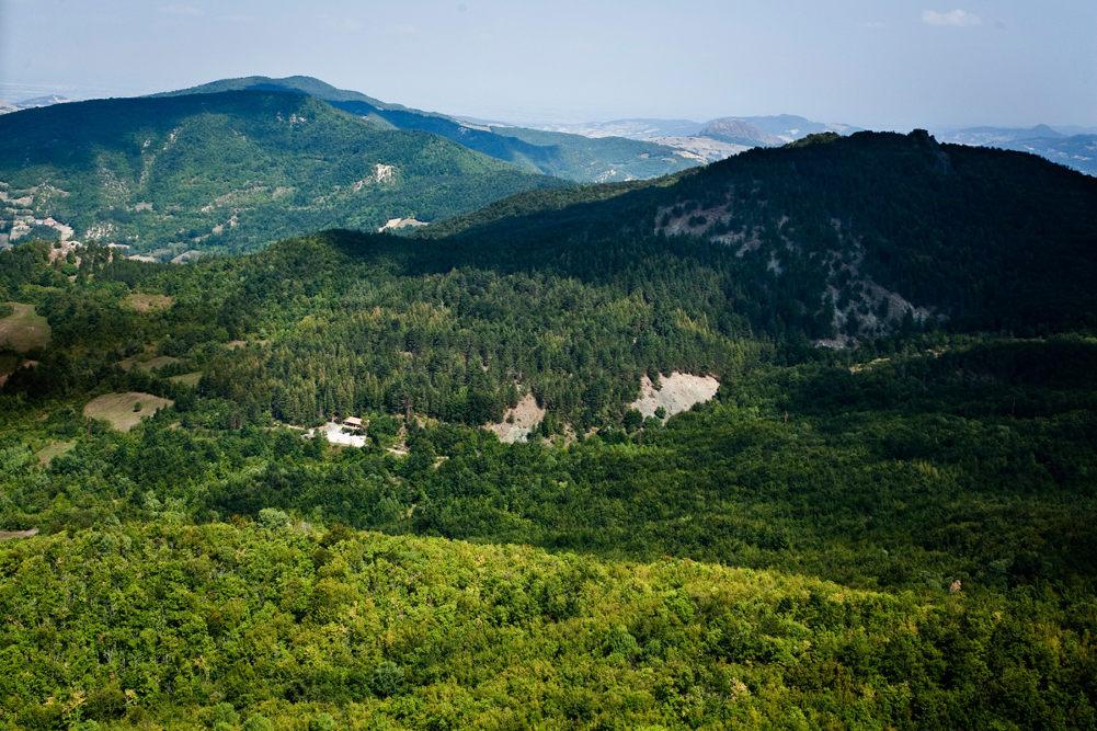 Альпийский сад Пьетро Корва / Фото: flaviochiesa.it