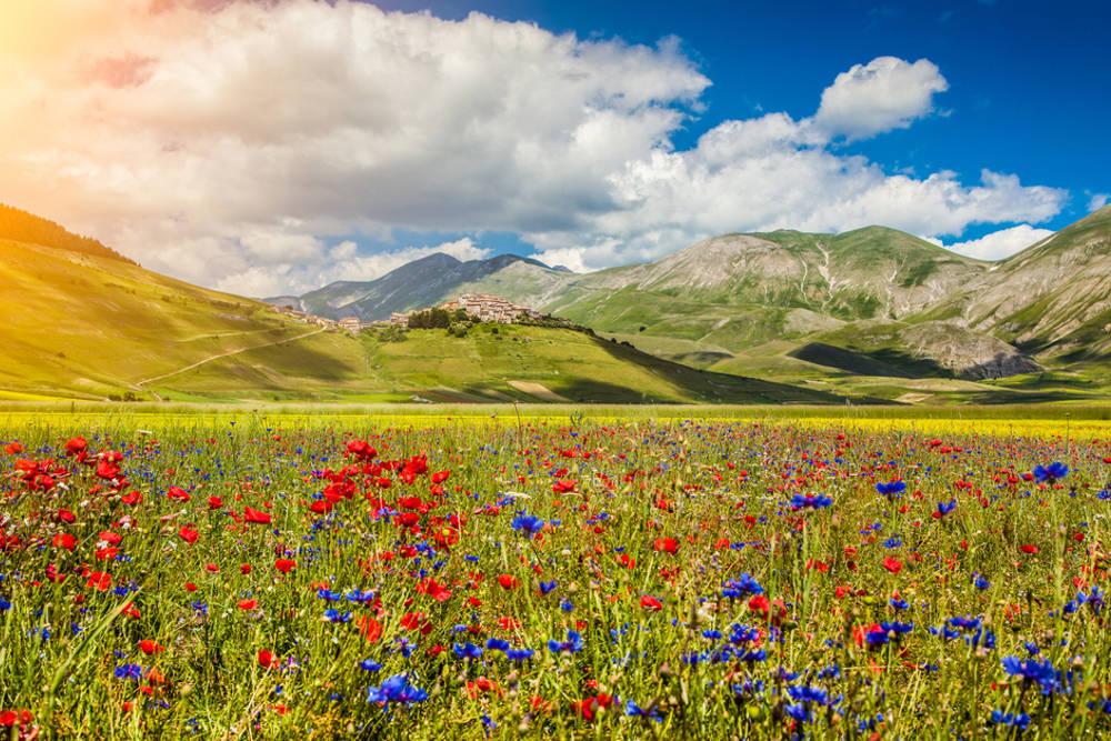 Il Pian Grande di Castelluccio di Norcia / Foto: Shutterstock.com