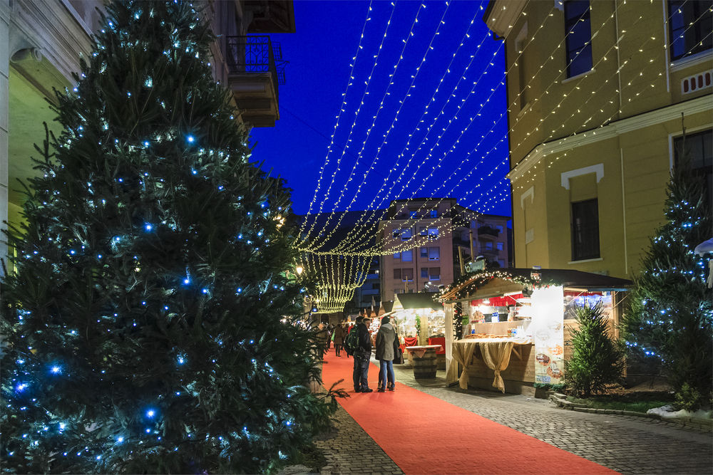 ©orietta gaspari / Shutterstock.com