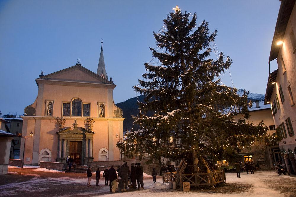 © Ryszard Stelmachowicz / Shutterstock.com